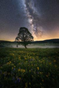 fotokurzy Šumava a hvězdy
