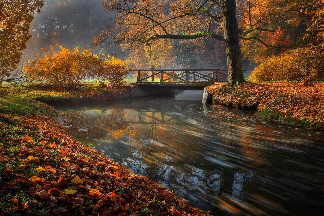 Průhonický park na podzim